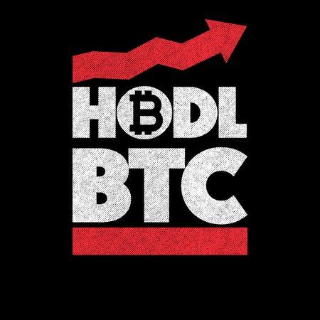 """HODL - ką tai reiškia? """"Hodler"""" kriptovaliuta ir jos investavimo strategija"""