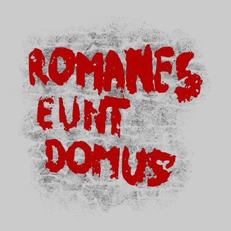 Romanes Eunt Domus T-Shirt