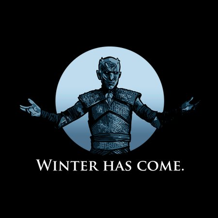 Winter Has Come T-Shirt