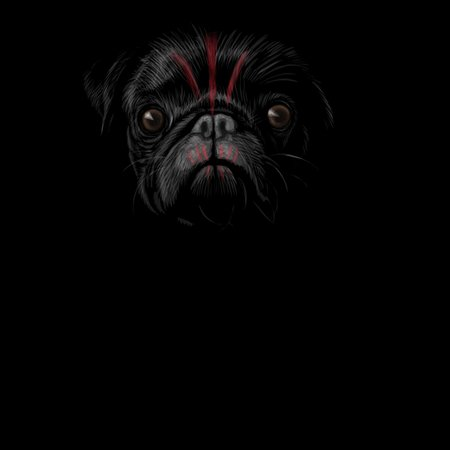 Planet Of The Pugs (no Text) T-Shirt