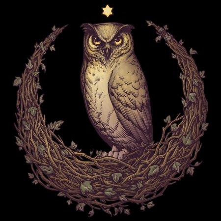Owl Hedera Moon T-Shirt