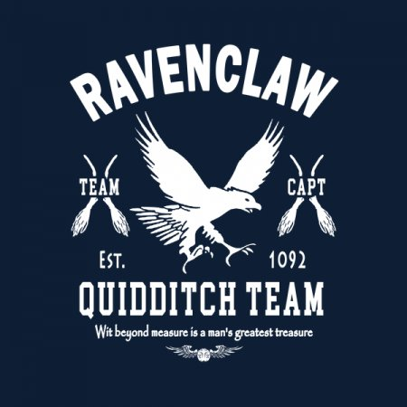 e6234e49 Ravenclaw Quidditch Team Captain - NeatoShop