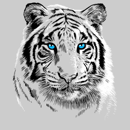 white tiger neatoshop