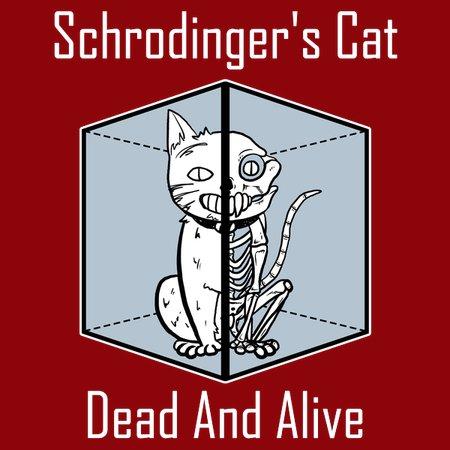 Shoedinger's cat